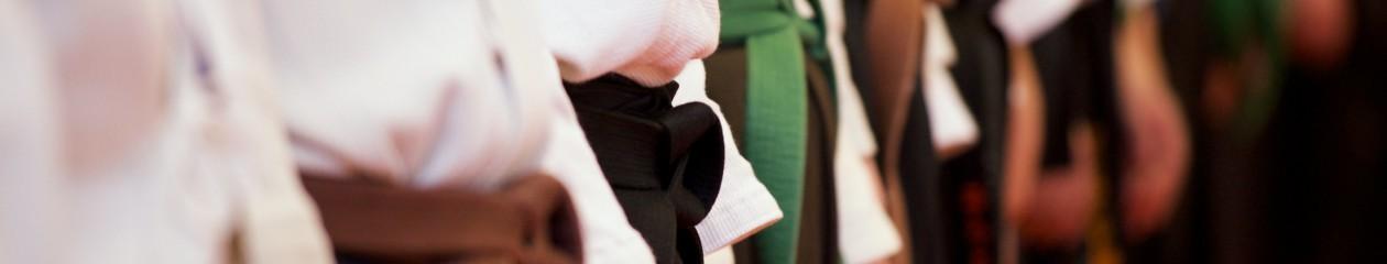 Taido on hyvän fiiliksen kamppailulaji, jonka juuret ovat karatessa ja perinteisessä okinawa-te'ssä – tervetuloa blogin lukijaksi!