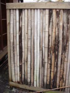bambuaita