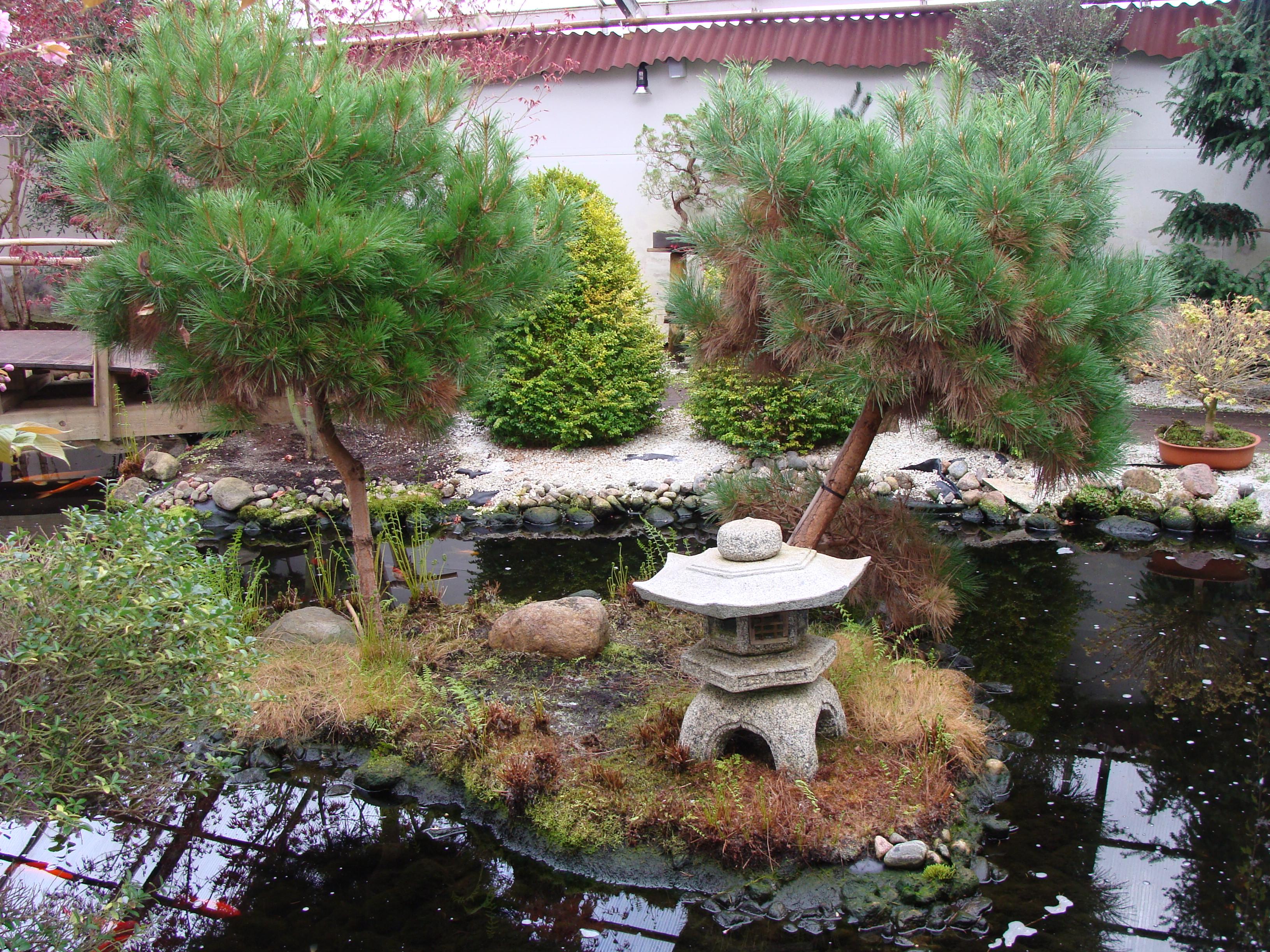 Kiinalainen Puutarha